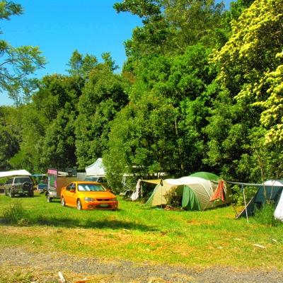 Revelwood Rainforest Retreat camping