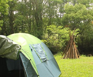 Camp it up over summer at Revelwood
