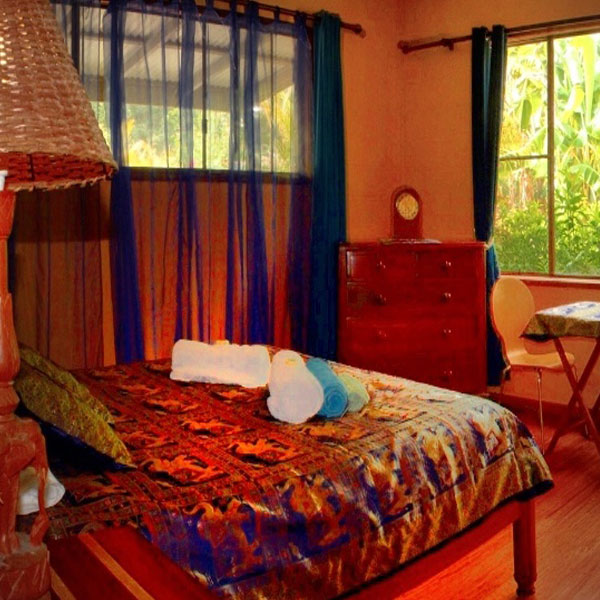 Accommodation - The Forestview room